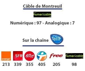 TVM diffuse aussi sur le câble, les box Internet ...